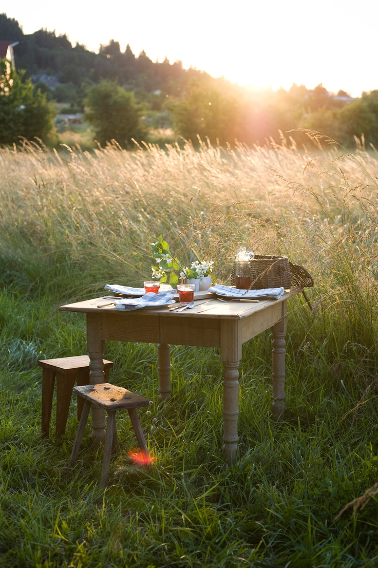 i would love to rock up to a picnic or bbq in london fields with a big wooden table. i would win the hipster twat competition and be completely fabulous at the same time.