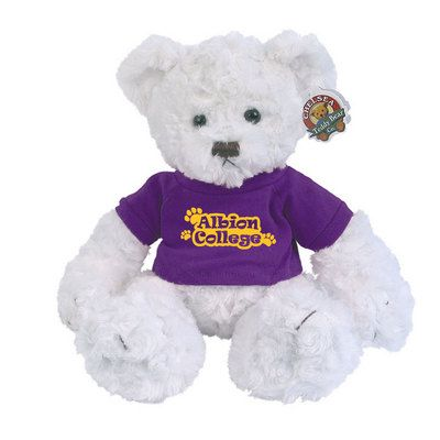 Albion Bear: Houston Cougars, Albion Bear, Bears, Cougars Dexter, 4 Year Schools, Baby Shower