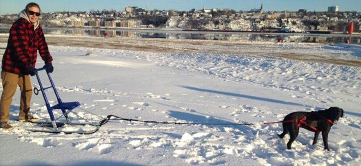 Location d'hiver de fatbikes et de trottinettes des neiges - Location Écho Sports - Location de vélos, vente, entretien et tours guidés