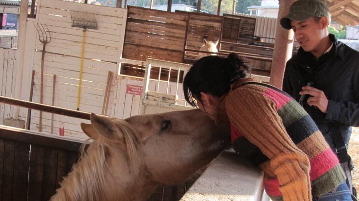 La visita a los Kibutz, una comunidad agrícola, fue un aprendizaje interesante. Daniela Zabala disfrutó de los caballos.