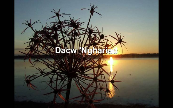 Dacw 'Nghariad [Welsh folk song] (Lyrics in Welsh and English here: http://www.omniglot.com/songs/welsh/dacwnghariad.htm)
