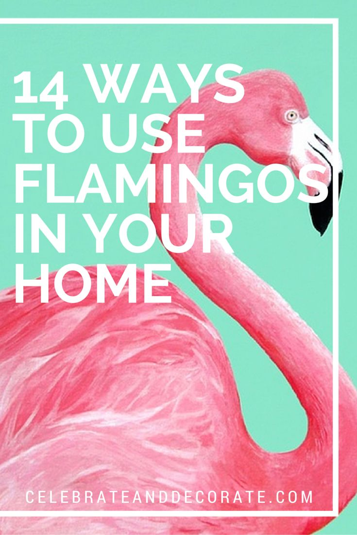 best 25+ flamingo decor ideas only on pinterest | flamingos