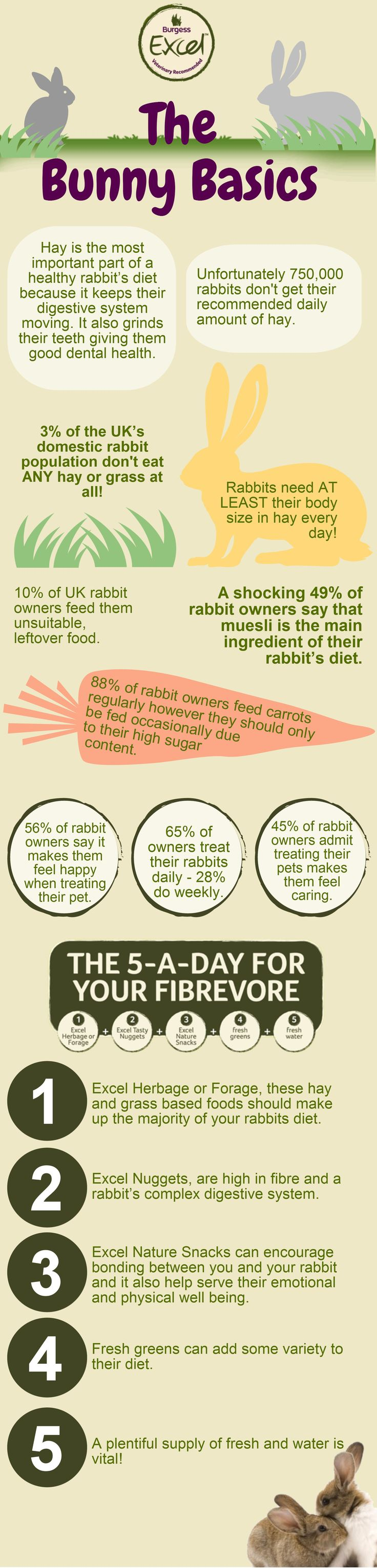 Rabbits deserve their reputation as great pets – they are friendly, inquisitive, content to play with their owners and can happily be held and stroked. With the correct diet, care and handling you and your rabbit will have a long and happy time together.  *Statistics from The PDSA*