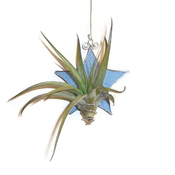 Pale Blue Stained Glass Air Plant Holder