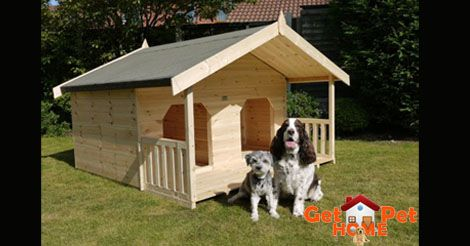 Find more information about kennels near your area for your pet on GetPetHome. Click here @ http://getpethome.com/kennels #dogs #kennels