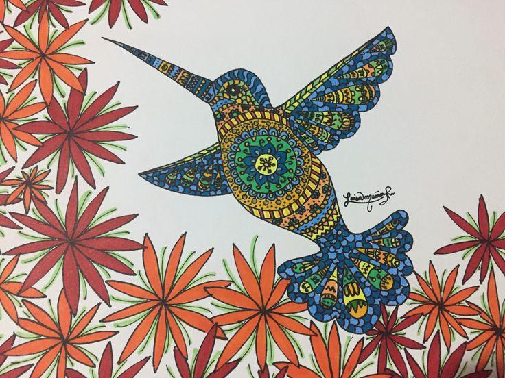 Hummingbird-Luisamr