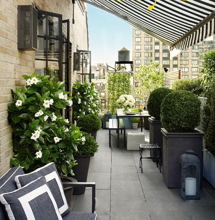 Timothy whealon terrace photo joshua mchugh for elle for Terrace balcony
