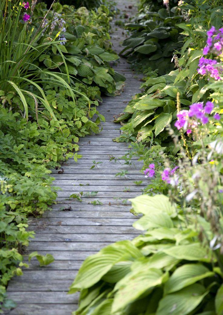Mökkipihassa on kiva kulkea mutkittelevia, jännittäviä polkuja pitkin. Luonnollinen kulkureitti näyttää pihapolun paikan. Katso Meidän Mökin kauniit ideat ja suunnittele oman mökkisi pihapolku.