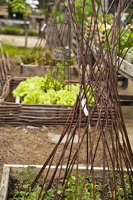 Garden Structure at TerrainGardens Ideas, Flower Support, Gardens M, Gardens Structures, Vegetables Gardens, Twig Flower, Kitchens Gardens, Twig Structures, Willow Branches