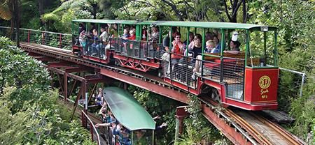 Driving Creek Railway is one of Coromandel's most popular attractions and suitable for all ages. A one hour round trip on a narrow gauge mountain train through a replanted forest up to the Eyeful Tower viewing platform featuring a superb view over the Coromandel Town, harbour and beyond. Coromandel Adventures DCR shuttle service departs Coromandel Town at 12.15pm and returns at 2pm. Bookings are essential.