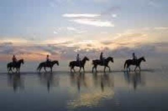 Horseback riding on the beach, South Padre Island, Texas