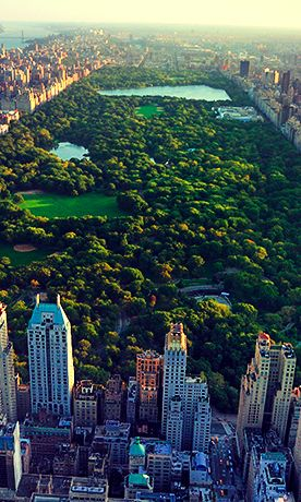 8 Fabulous Things to do in Central Park - Don't miss out on some of the best things Central Park has to offer. There's much more to it than Sheep Meadow, the Loeb Bathhouse, and the Central Park Zoo.