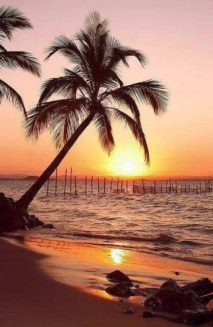 Atardecer por la playa | Sunset by the beach