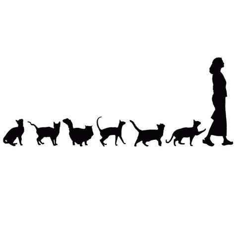 Cat Following Woman Car Decal – m e r v e 🌱