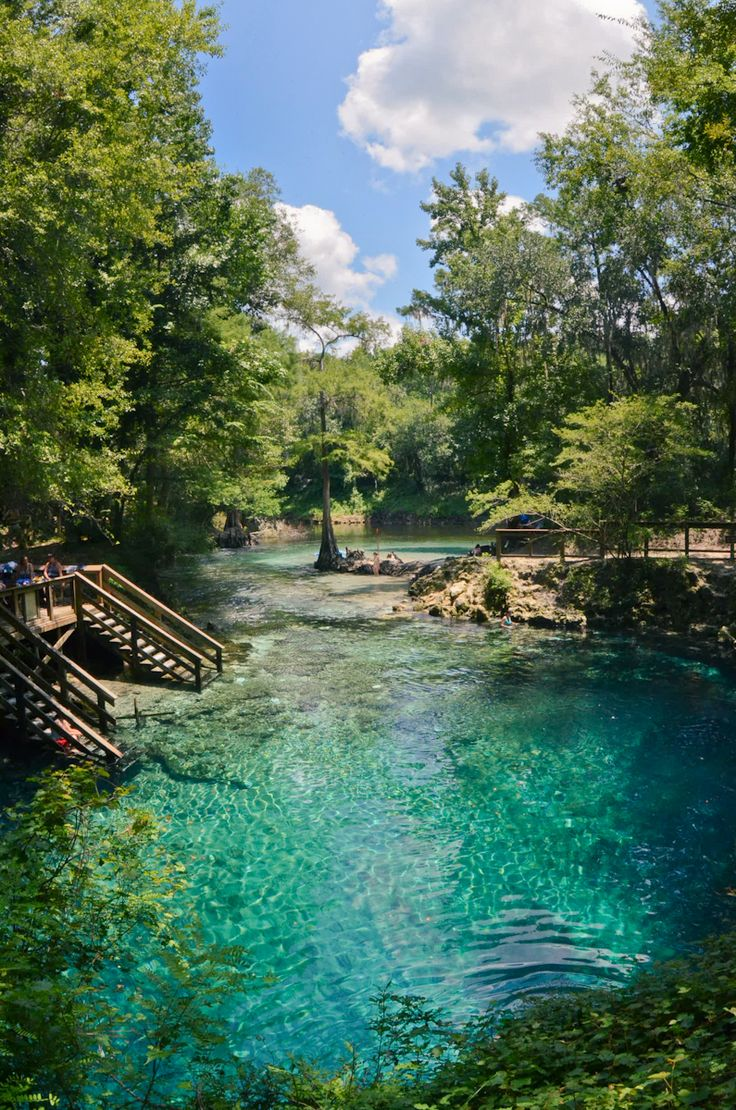 madison blue spring state park in florida by emma renly