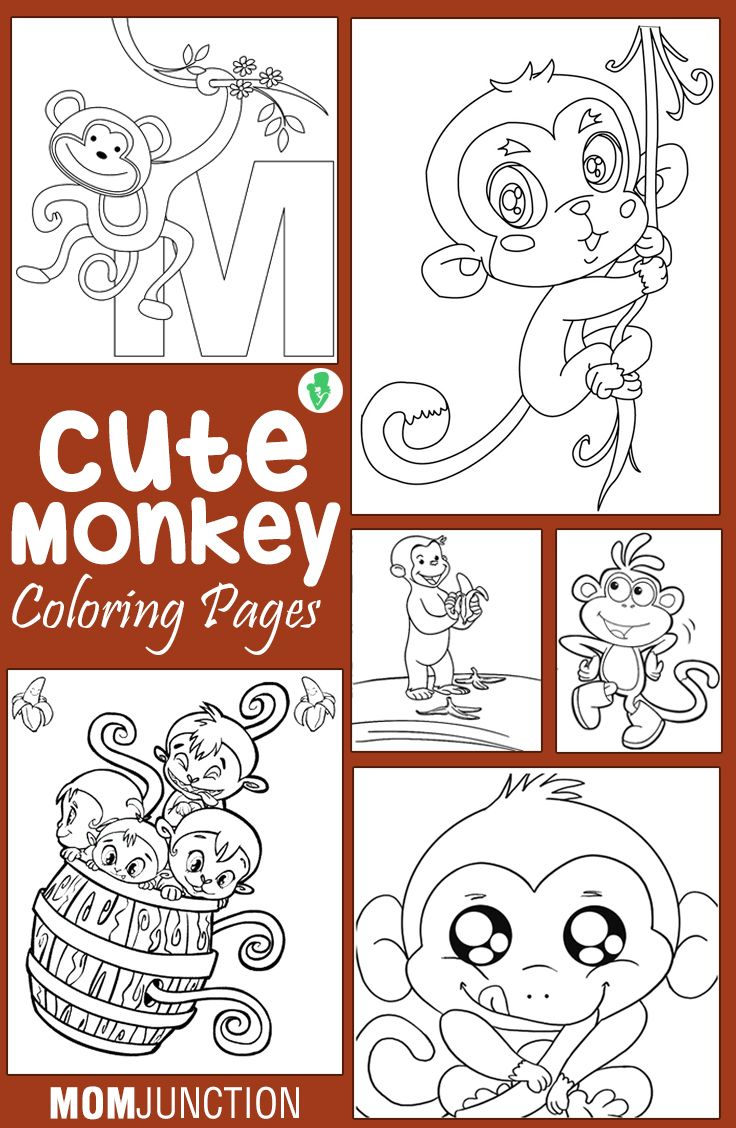 20 Cute Monkey Coloring Pages Your Toddler Will Love: Monkey coloring sheets are both fun and educational. Your child can learn about the different kinds of monkeys while having fun coloring the diagrams. Here are twenty monkeys coloring sheets for your kids to color.