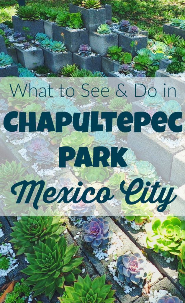 What to see and do in Mexico City's largest park