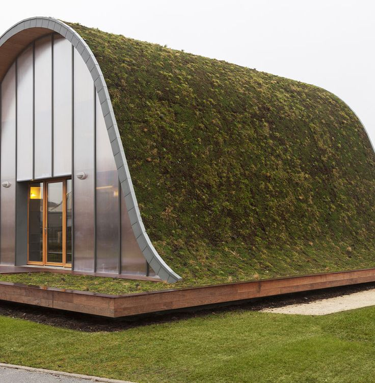 underground-wave-house-with-wildflower-and-herb-exterior-4.jpg
