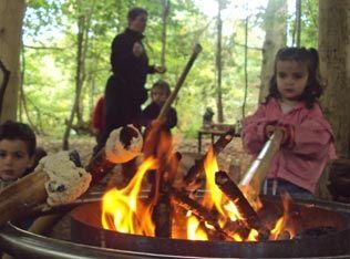 Nature kindergarten / outdoor education / forrest kindergarten / forrest kindy
