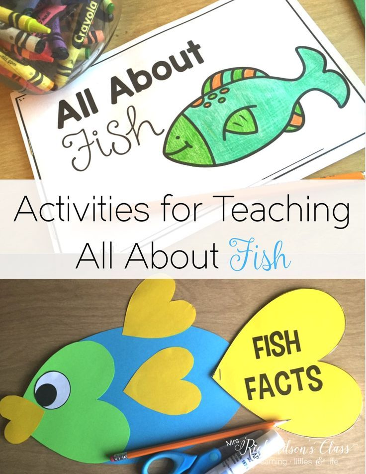 Fish activities for teaching all about fish in the kindergarten, first grade, and second grade classroom! You can easily integrate reading, writing, science, and research with this unit! Science made easy!!