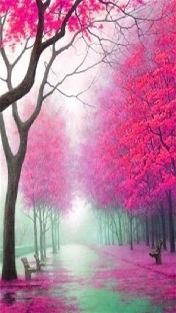 Pink Tree's // pinned by @welkerpatrick