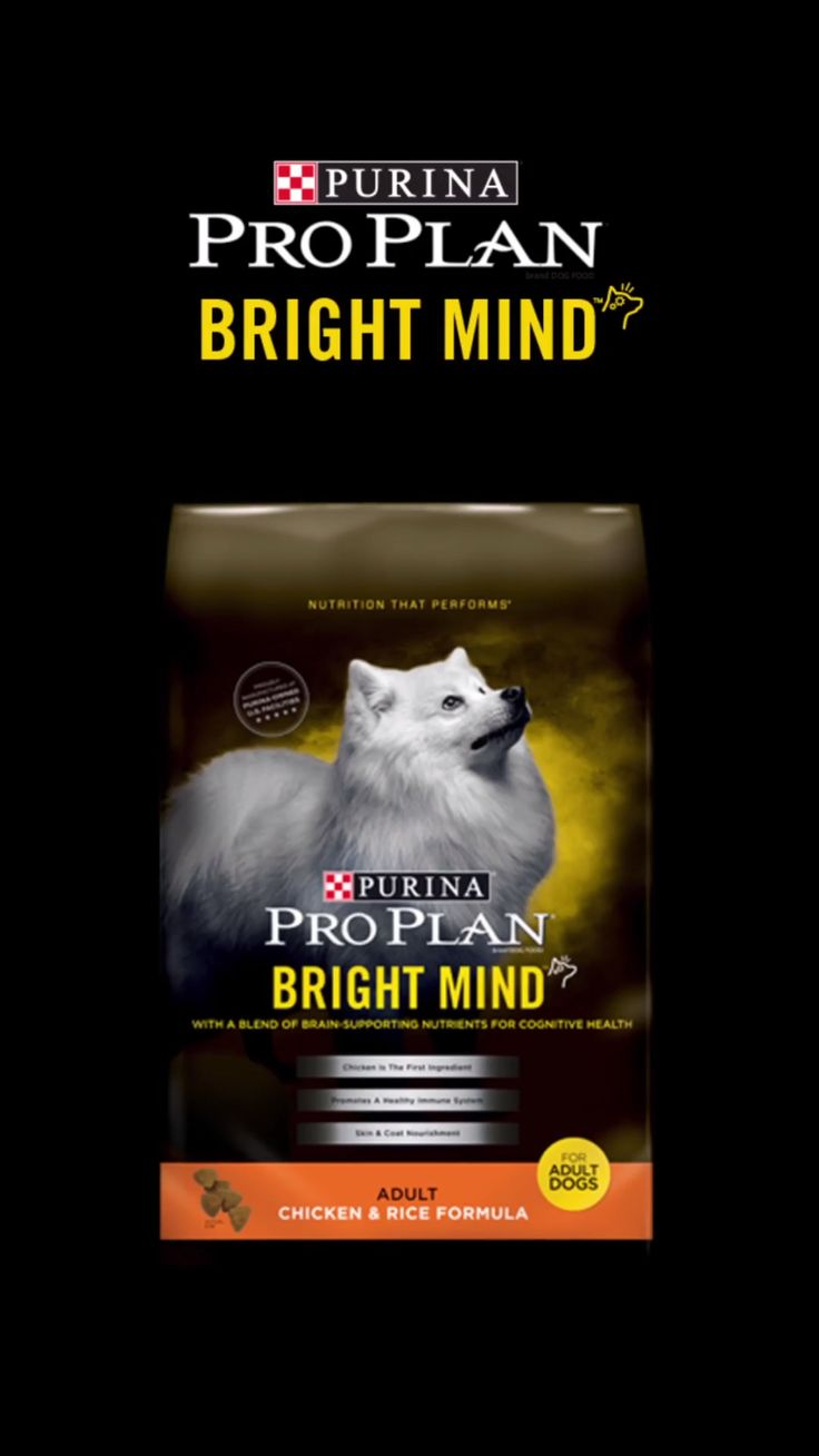 Our Purina Pro Plan Bright Mind Adult formulas contain a proprietary blend of nutrients including DHA & EPA, antioxidants, B vitamins, & arginine to support a dog's cognitive health throughout adulthood. And if your dog is seven years or older, there are Bright Mind Adult 7+ formulas which promote mental sharpness and alertness in dogs seven and older. Buy it today!