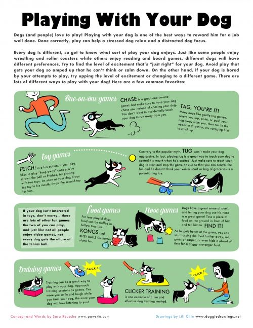 Playing with Your Dog - an illustrated guide