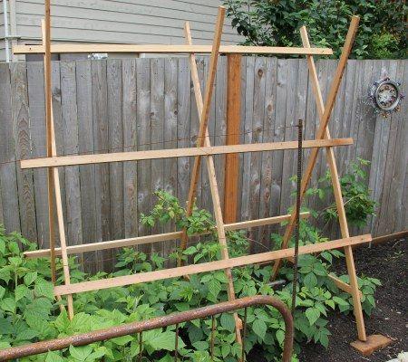 A-frame garden trellis