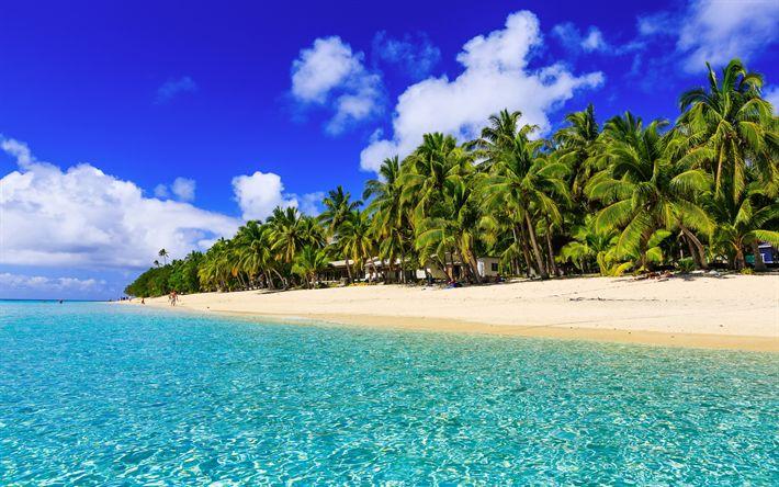 Lataa kuva ranta, kesällä, tropiikissa, resort, palmuja, ocean