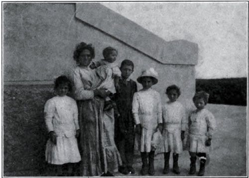 italian immigrants The italians in buffalo - an overview excerpts from ethnic heritage enriches buffalo, by anthony cardinale, pub in the october 12, 1980 edition of the buffalo news.