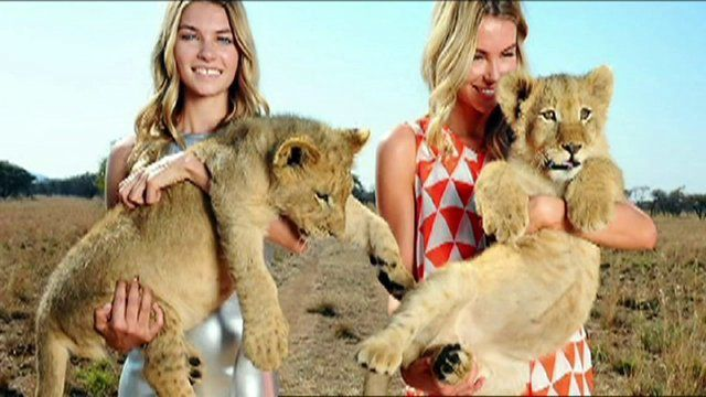 Walking with Lions Africa on Vimeo