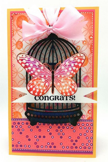 Congrats by thedailymarkerKathy Racoosin, Cards Butterflies Cards, Pennies Black, Cards Ideastutorialsgift, Birds Cages, Birds Cards, Cages Birds, Cards Ideas Tutorials Gift, Black Contributor