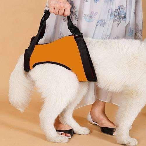 The Help Em Up Dog Harness For Backlegs Up Dog Dog Harness