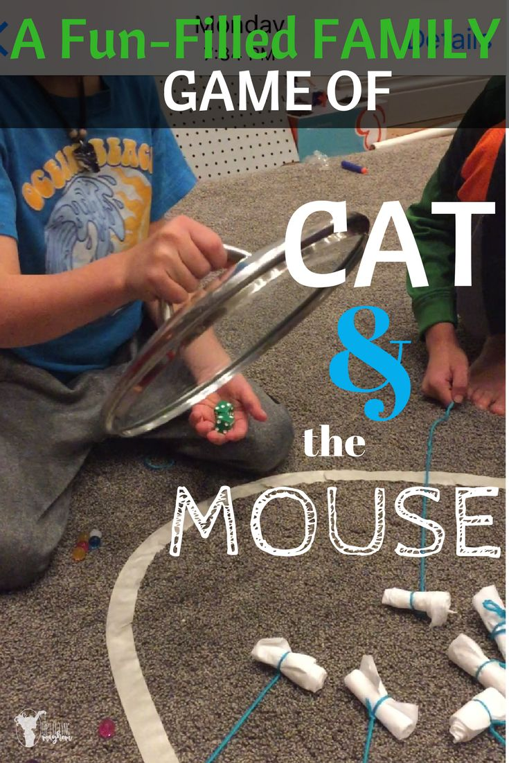 Hilarious game of Cat and the Mouse! Great game to play with your kids of ALL AGES!!