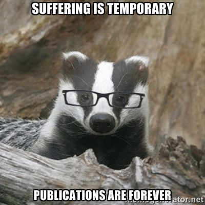 Suffering is temporary. Publications are forever.