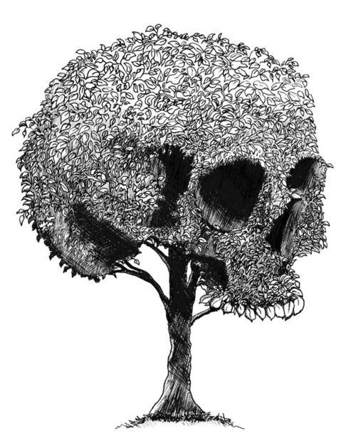 FR: Crâne en arbre format. BR: Crânio no formato de árvore.