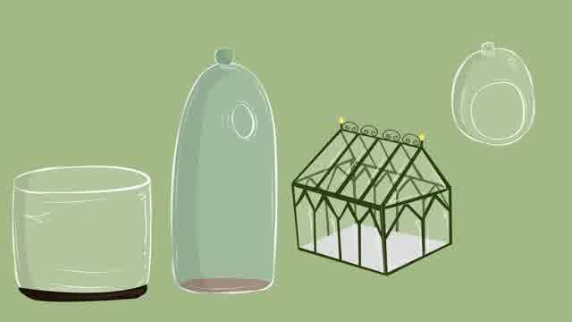 Image titled Make a Terrarium Step 2 preview                                                                                                                                                                                 More
