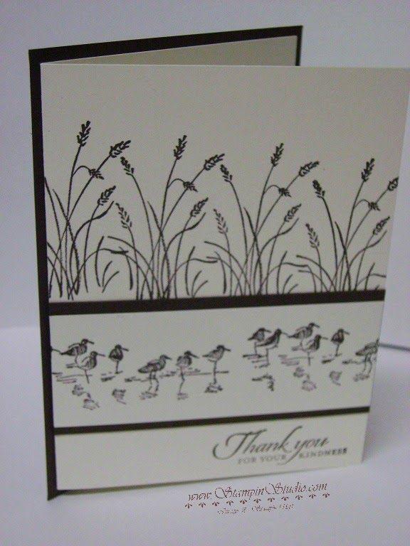Stampin' Studio, Stampin' Up! Wetlands, Masculine Cards