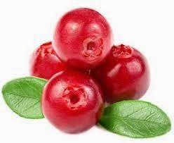 Το e - περιοδικό μας: Cranberries, ευεργετικά και θεραπευτικά