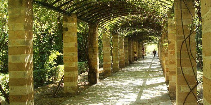 Βόλτα στην Αθήνα: Μια ανοιξιάτικη Κυριακή στο κέντρο
