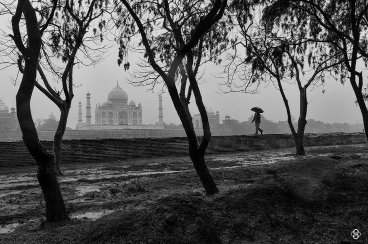 'Timeless Beauty' by Subodh Shetty on 500px
