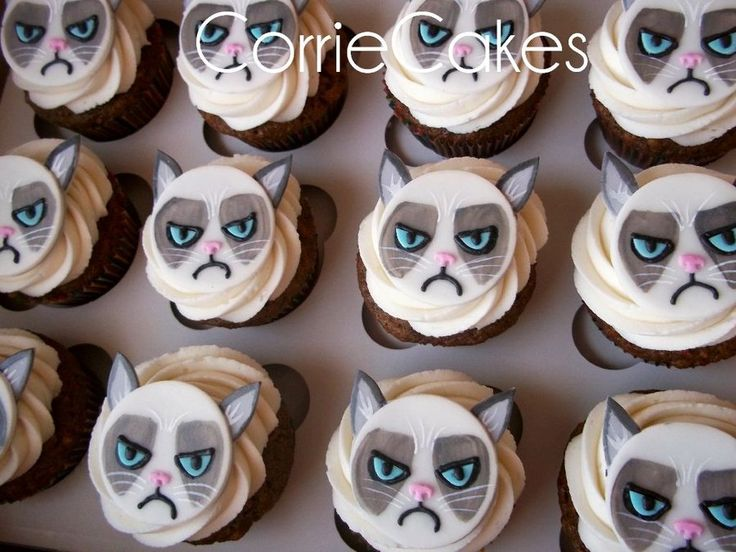 Grumpy Cat Cupcakes  By Corrie CakesDecorcom Cake Decorating