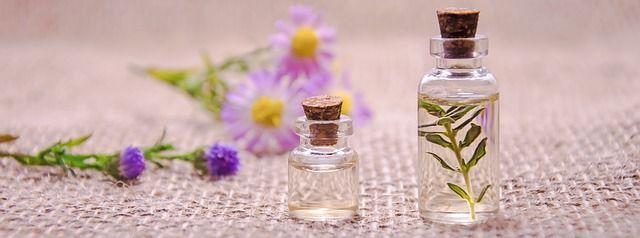 ¿Qué es el pachuli?. El pachuli es uno de esos ingredientes que resultan fundamentales en la perfumería. Su característico olor hace que forme parte de la composición de una gran cantidad de fragancias, además de ser el favorito de muchas personas amantes del mundo de los aromas.