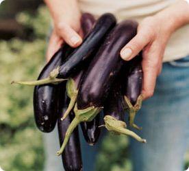 Nice tasting marinade for aubergine / eggplant