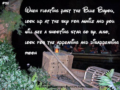 disneyland secrets | When floating past the Blue Bayou, look up at the sky for awhile and ...