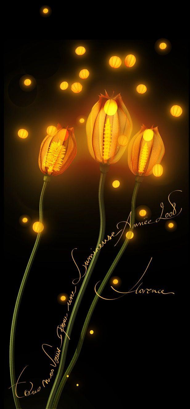 Illustration vœux 2008 dessin lanterne Florence Gendre  #illustration #lanterne #voeux