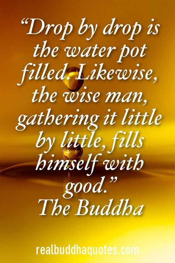 wise river buddhist single men The three wise men was one a buddhist and a hindu or buddhist the wise men came bearing gifts of gold then a river of molten metal would sweep the earth.