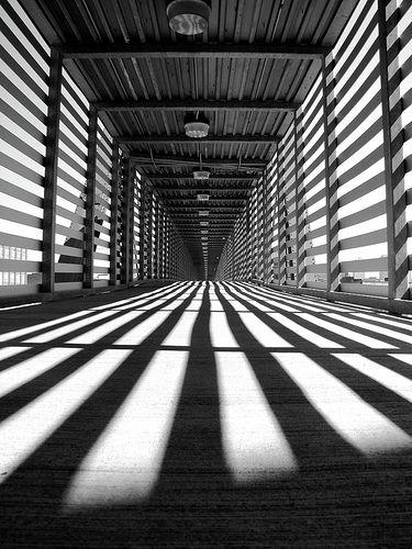 perspective. photography en noir et blanc, exemple parfait du rympme