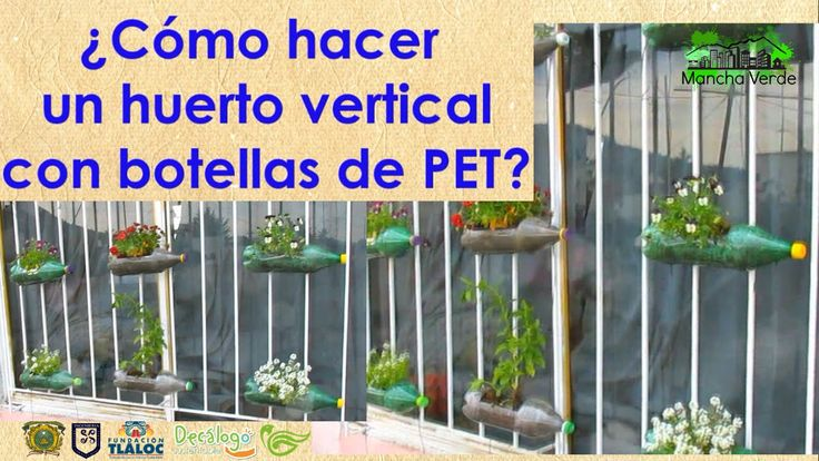 Huerto Vertical con botellas de PET