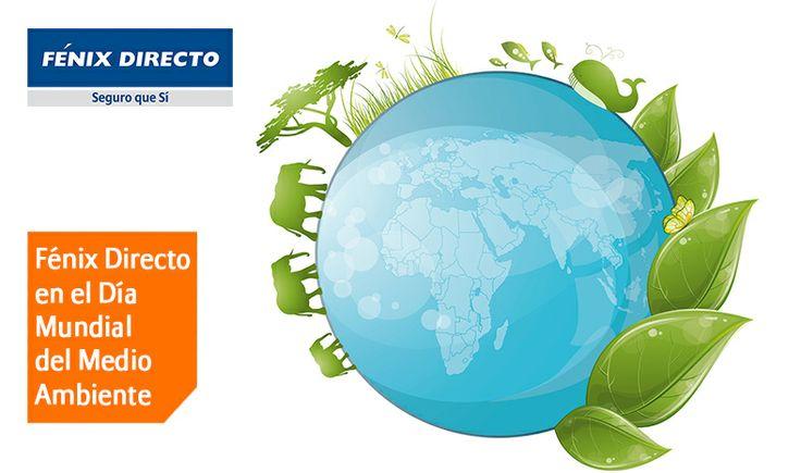 Fénix Directo en el Día Mundial del Medio Ambiente